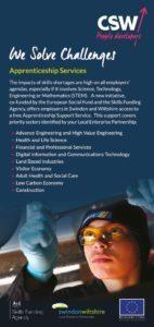 thumbnail of CSW Employer Leaflet