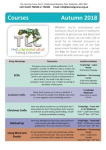 thumbnail of TLC Curriculum leaflet (005) (002)