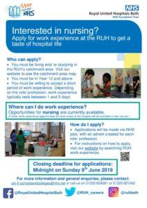 thumbnail of Work Experience Poster Nursing