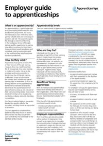 thumbnail of Employer_guide_to_apprenticeships_summer_2019