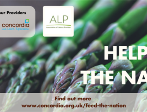 Feed the Nation Campaign