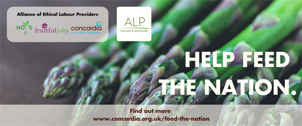 Feed the Nation campaign banner with partners logos