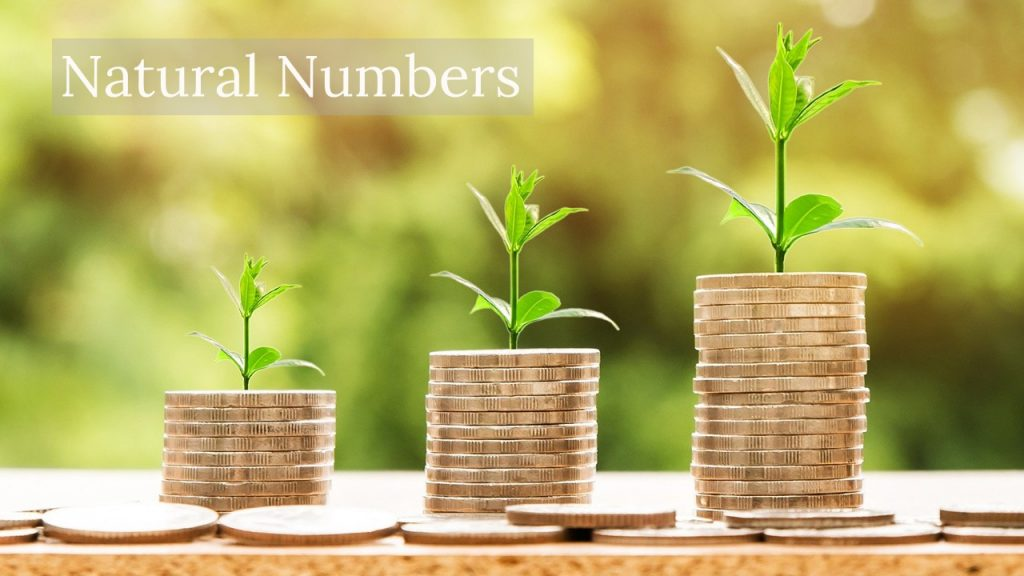 Natural Numbers employer image depicting money growing