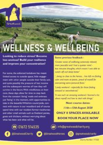 thumbnail of Wellbeing and Wellness August 2020